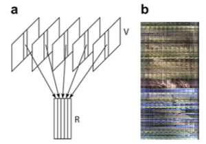 Visual rhythm: (a) simplification of a video content by mapping each frame into one column of an image; (b) a real example produced by sampling the central vertical line of the digital images.